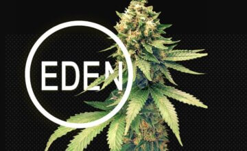 Eden Empire cannabis stores