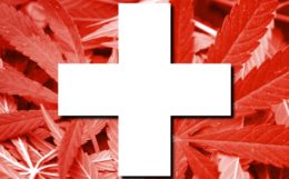 Swiss-flag-pot