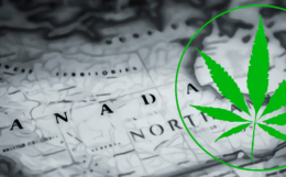 North-America-cannabis