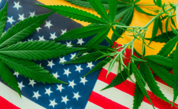 Gallup-poll-americans-cannabis